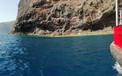 Activan la embarcación de control de microalgas tras dos manchas en Tenerife